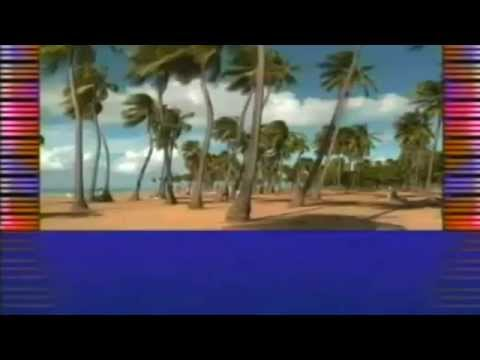 Dream Chimney: Track of the Day : Mr  Concerto (Flamenco Mix